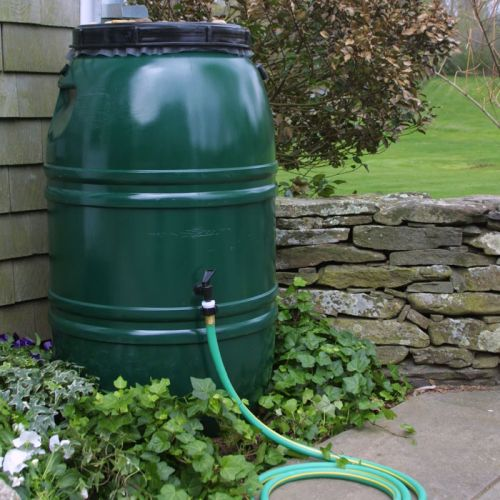 recuperation d'eau de pluie